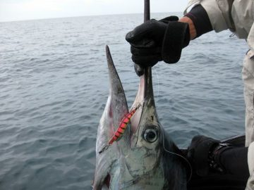 best-salmon-fishing-nz