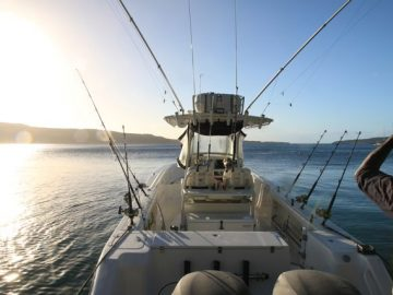 Fishing on Azzurra