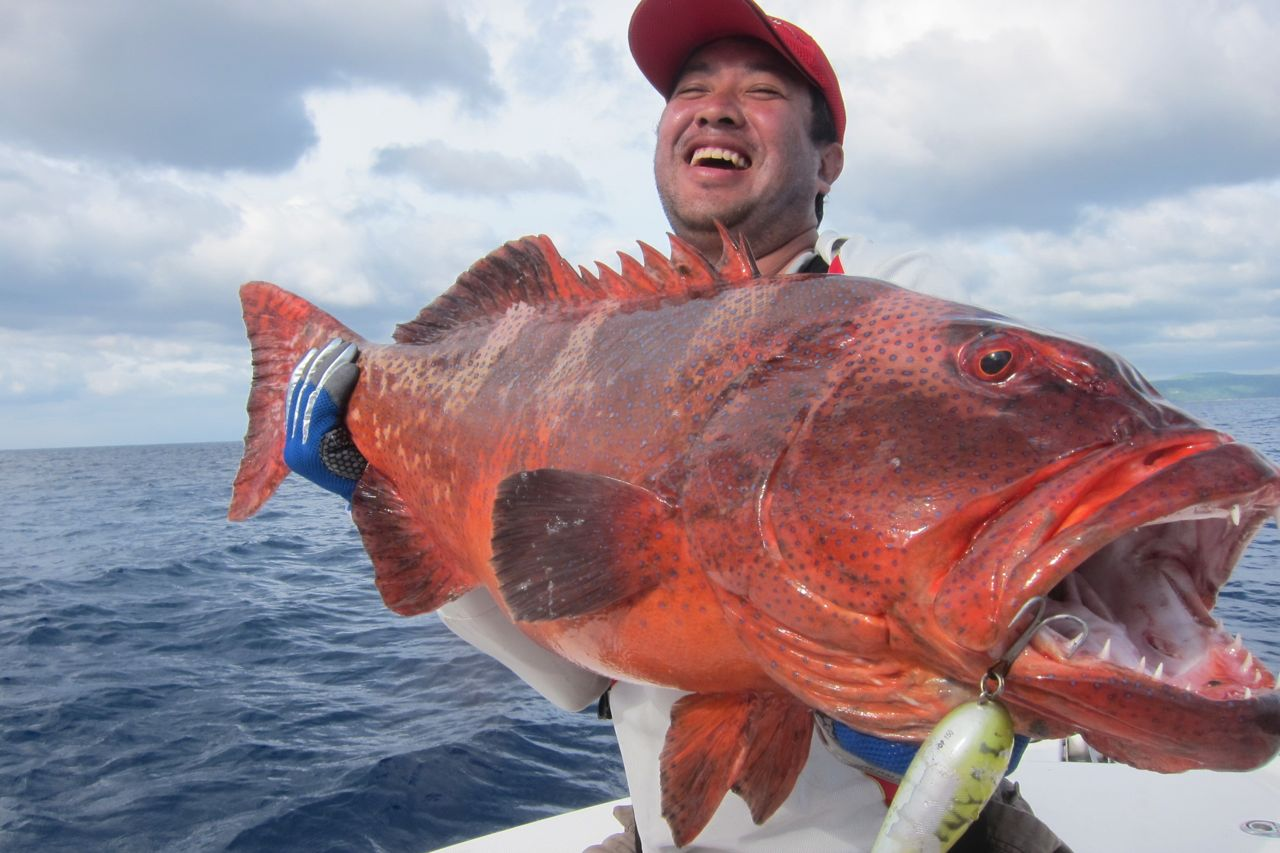 What is the best fish for eating page 8 for What is the healthiest fish