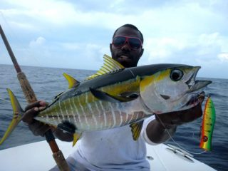 catching yellow fin tuna at Vanuatu fishing trip