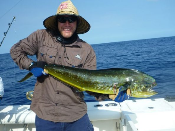 Fishing vanuatu offers blue marlin and all other species for Fishing in vanuatu