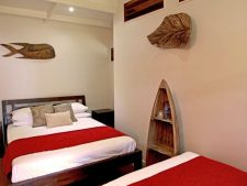Trees and Fishes accommodation