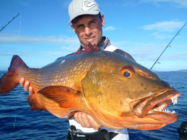 Sport fishing at vanuatu island the ocean blue difference for Blue bass fish