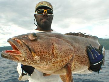 Coral trout fish caught by Nelson Dueza's crew