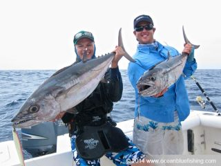 These dogtooth tunas are product of our perseverance