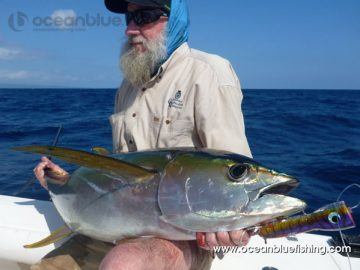 harrison caught yellowfin