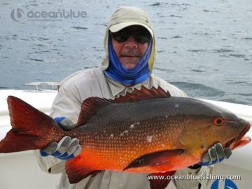 Alan Morrison Mothership Trip: huge red bass