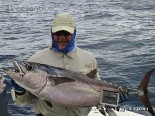 Alan Morrison Mothership Trip: big dogtooth tuna fish