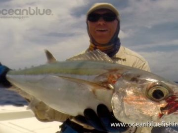 Alan Morrison Mothership Trip: angler while holding dogtooth tuna