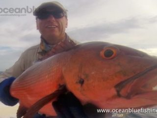 Alan Morrison Mothership Trip: another huge red bass