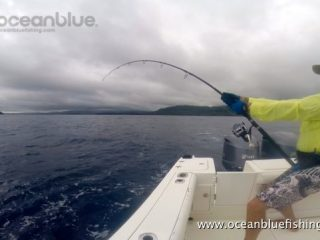 Alan Morrison Mothership Trip: angler in action