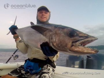Alan Morrison Mothership Trip: looks like a huge dogtooth tuna