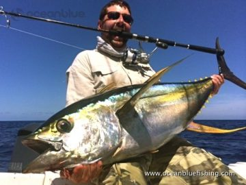 Ocean Blue guest Paul Musgarve's 35kg+ yellowfin tuna catch