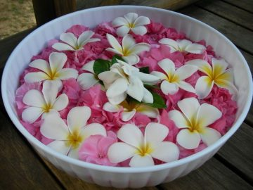 Chloe Taylor Vanuatu Fishing: flowers in bowl