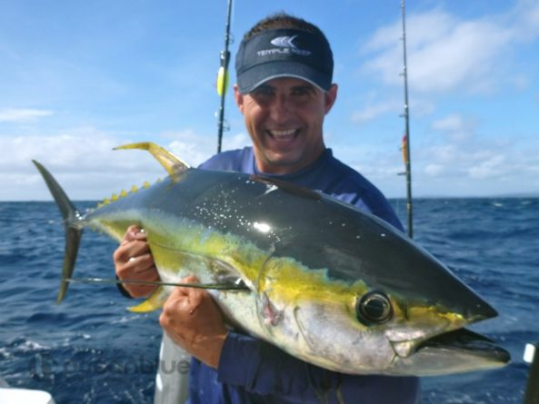 From Sao Paulo, Brazil to Trees and Fishes Vanuatu for ...