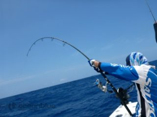 ocean-blue-fishing-charter