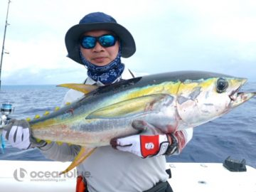 Vanuatu fishing for yellowfin tuna
