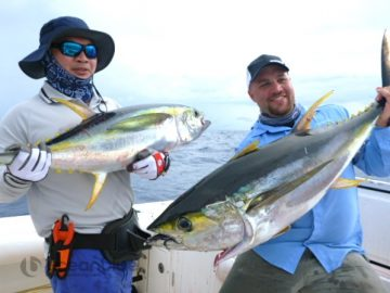 Vanuatu double hook up on yellowfin tuna