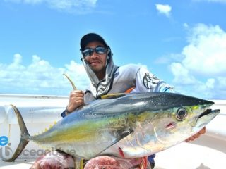 yellowfin tuna caught on topwater