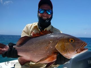 bottom bashing in vanuatu for red bass