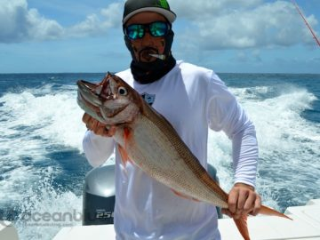 paradise-sportfishing-adventures