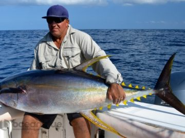 Vanuatu Big Yellowfin Fishing07.