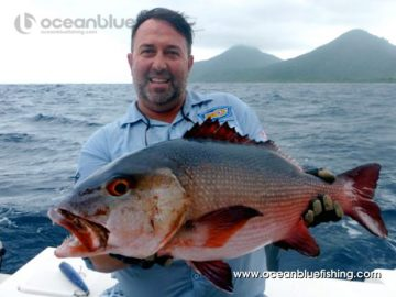 The red coral trout