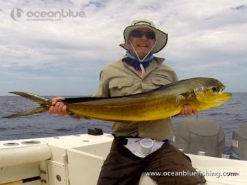 Laycock: huge mahi mahi caught by this angler