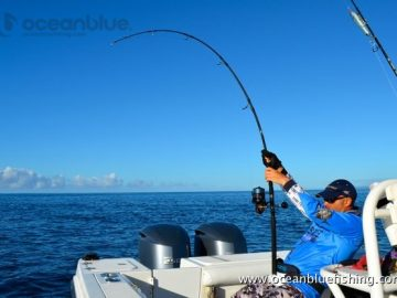 ocean-blue-fishing-vanuatu-prices-3