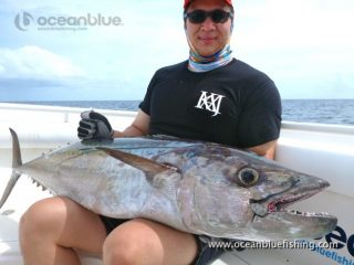 dogtooth tuna fish