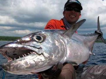 angler showing huge dogtooth tuna