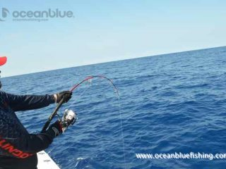 fishing at Ocean Blue