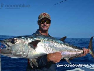 yellowfin tuna fishing experience