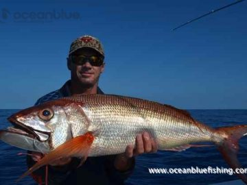 Redbass fishing at Ocean Blue