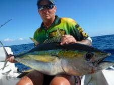 yellowfin sport fishing