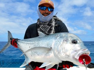 ocean-blue-fishing-vanuatu-prices