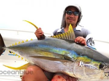 Vanuatu yellowfin tuna season starts with a bang