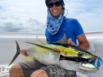 yellow fin tuna fishing