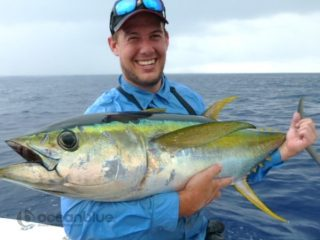 yellowfin tuna fishing in vanuatu