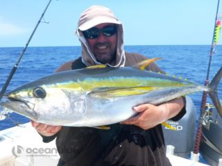 catching yellowfin tuna