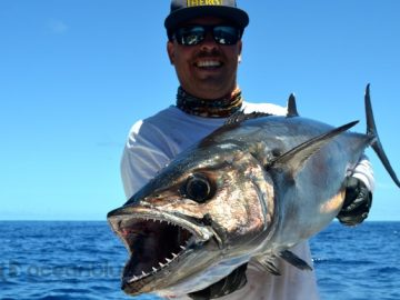 high-adventure-sportfishing-charters
