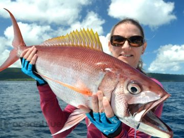 vanuatu-game-fishing-season-2