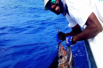 Vanuatu-Dream-Fishing-22