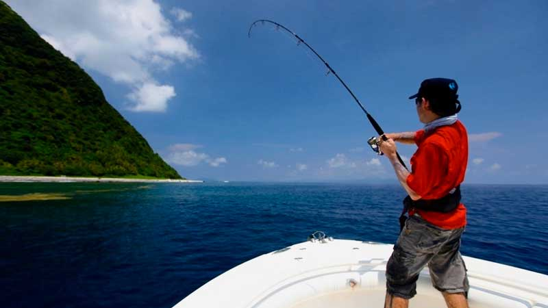 Some tips on taking care of your fishing reels.