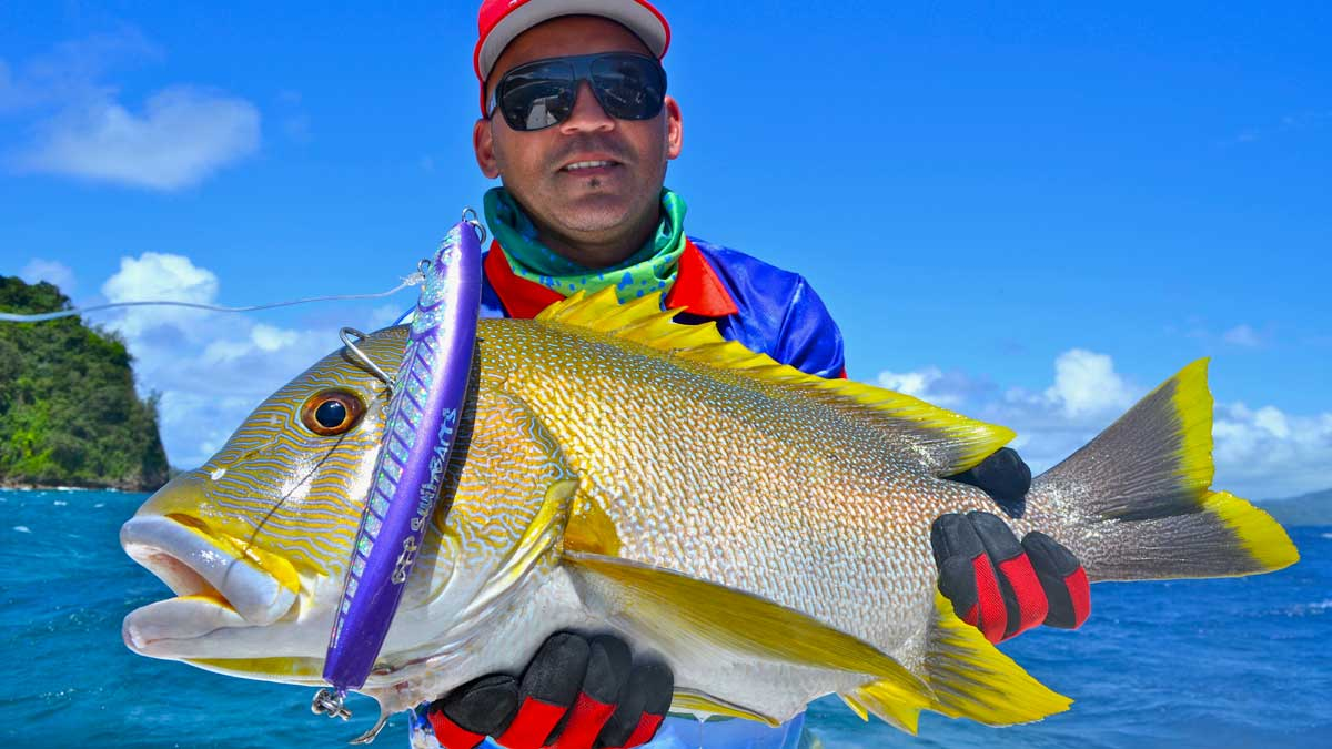 vanuatu light tackle sport fishing